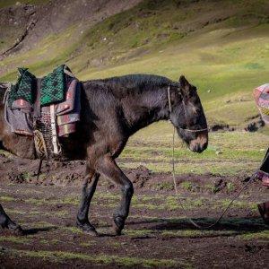 trekking-teczowa-gora-peru