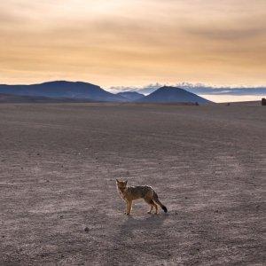 zachod-slonca-boliwia-wyprawy