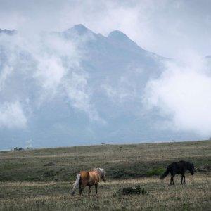 park-cotopaxi-ekwador-trekking