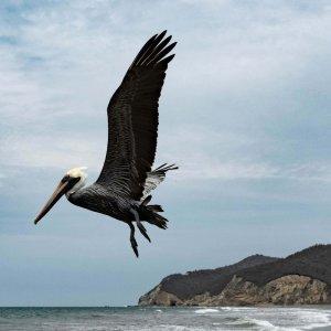 wybrzeze-ekwador-wycieczki-ekwador
