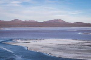 wycieczki do boliwii, salar de uyuni, flamingi