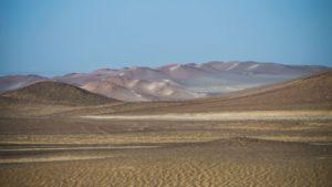 rezerwat w paracas, peru wycieczki