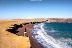 rezerwat w paracas, wycieczki peru